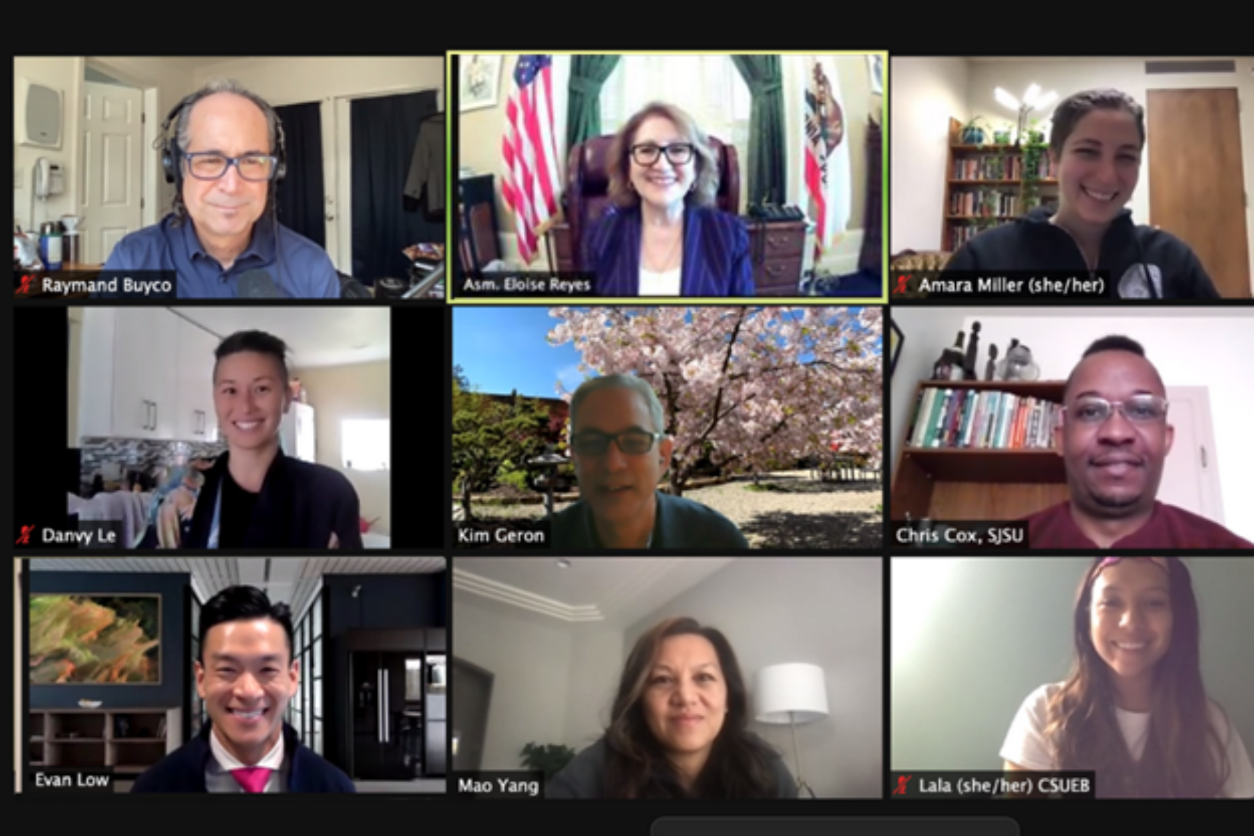 Members are 2021 Virtual Lobby Day in a Zoom screenshot