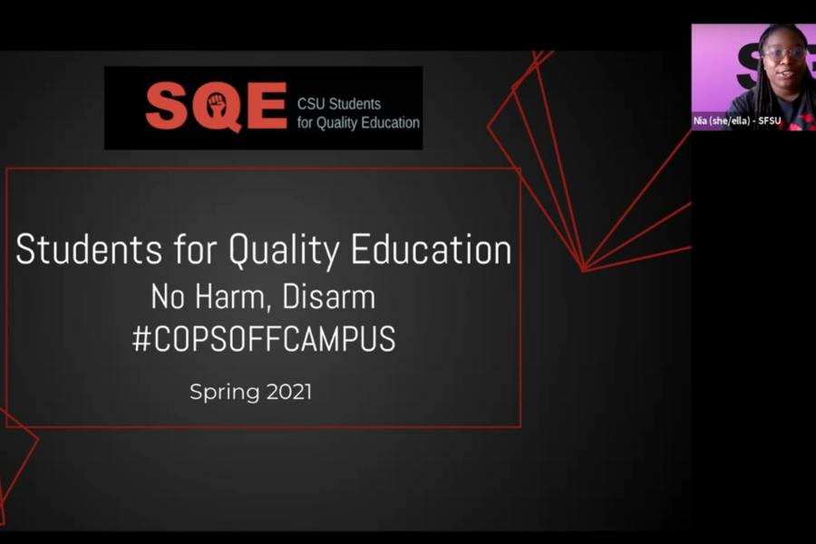 Screenshot of SQE's No Harm Disarm Zoom presentation.